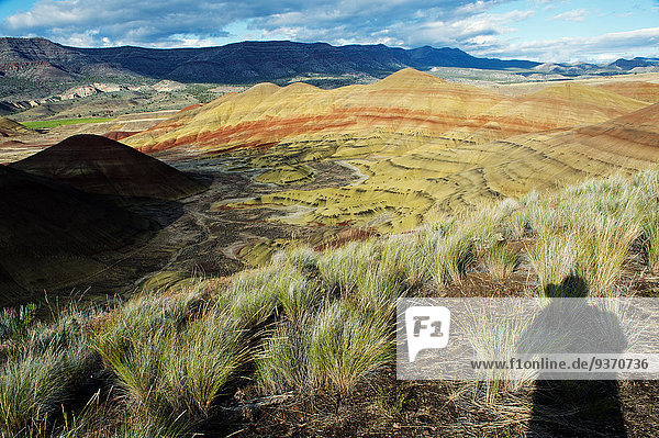 Shadow of photographer photographing painted hills in desert landscape  Bend  Oregon  United States