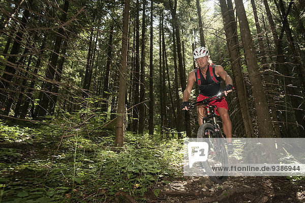 Mountain biker riding downhill in a forest  Wendelstein  Bavaria  Germany