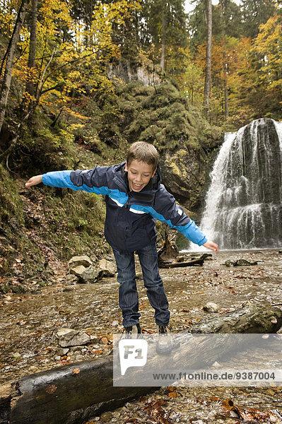 gehen Junge - Person Baum Wald Baumstamm Stamm