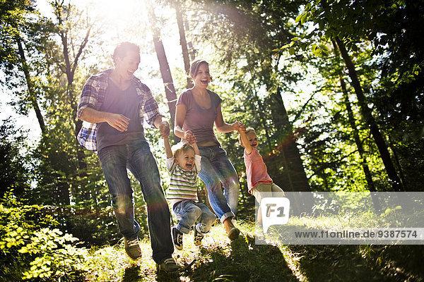 Fröhlichkeit, gehen, Wald, 2