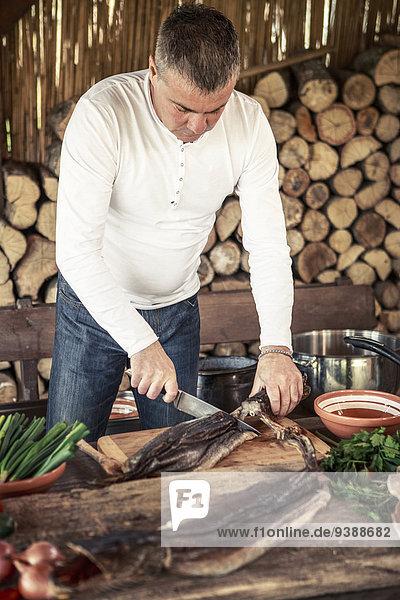 einsteigen Fisch Pisces Mann schneiden Vorbereitung