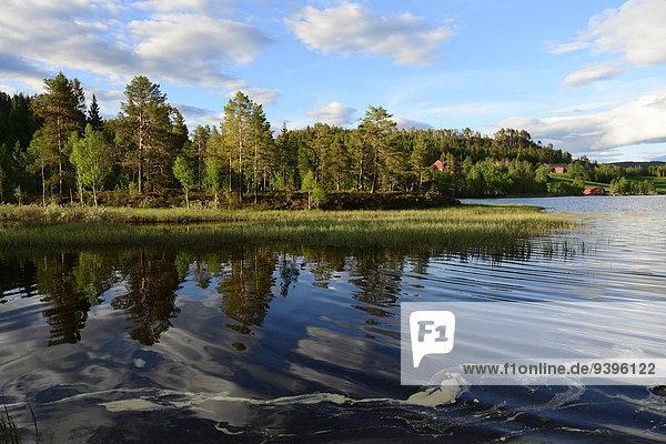 Europa Wolke Spiegelung See Norwegen Reflections Sor-Trondelag