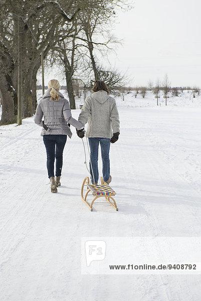 ziehen Schlitten Schnee