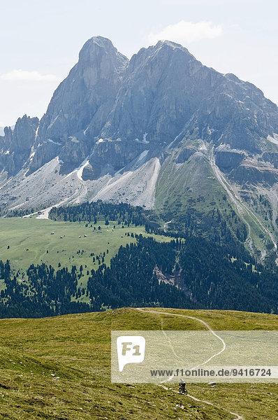 Lone Mountainbiker riding along mountain track