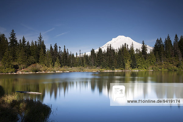 Mirror Lake mit Mount Hood  Government Camp  Oregon  USA