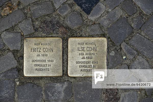 Stolpersteine  ??Gedenksteine für deportierte und ermordete Juden  Stralsund  Mecklenburg Vorpommern  Deutschland