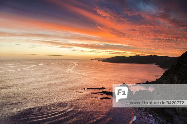 Abendstimmung an der Pazifikküste  Nugget Point  Catlins  Südinsel  Neuseeland