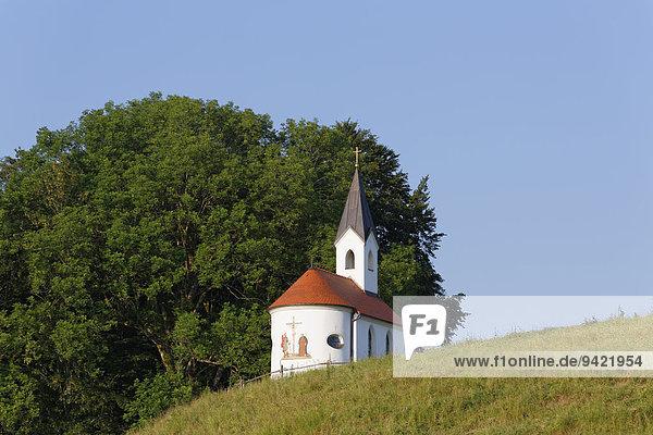 Kapelle  Eyrain  Irschenberg  Oberland  Oberbayern  Bayern  Deutschland