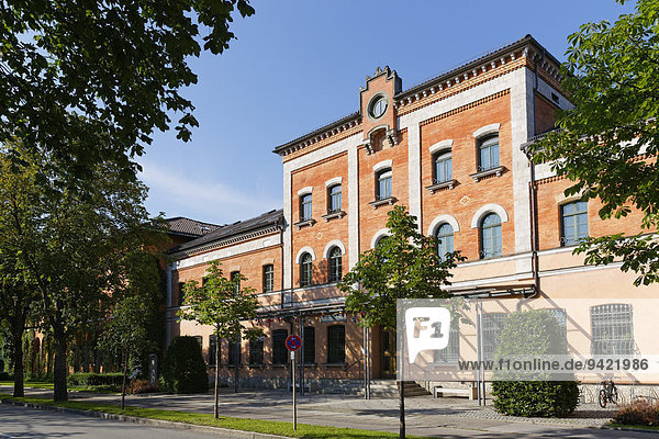 Rathaus  Rosenheim  Oberbayern  Bayern  Deutschland