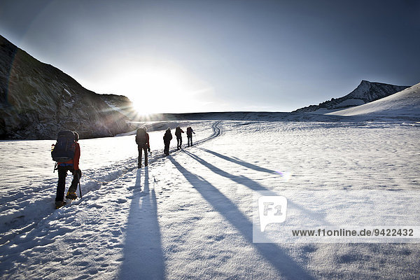 Mountaineers on the glacier  Großvenediger  Salzburg State  Austria