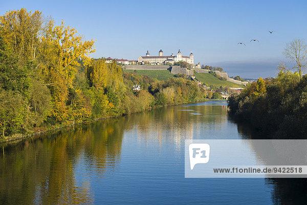 Festung Marienberg auf einem Hügel über der Stadt  mit dem Main vorne  im Herbst  Würzburg  Bayern  Deutschland