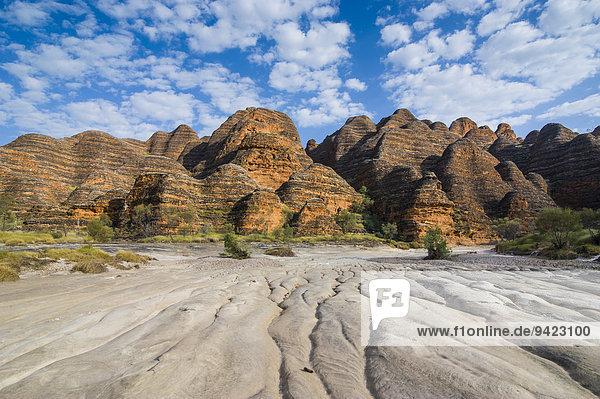 Bungle Bungles  bienenkorbförmige Sandsteintürme  Purnululu-Nationalpark  UNESCO-Weltkulturerbe  Eastern Kimberleys  Western Australia
