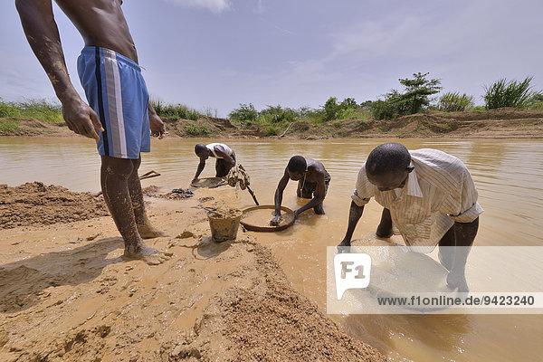 Diamond hunters searching for diamonds in a mine with sieves and shovels  near Koidu  Koidu-Sefadu  Kono District  Eastern Province  Sierra Leone