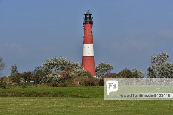 Lighthouse  island of Pellworm  North Frisia  Schleswig-Holstein  Germany