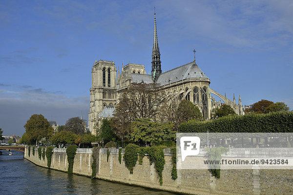Kathedrale Notre Dame an der Seine  Paris  Frankreich