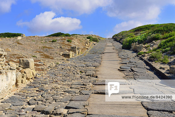 Straße und Abwasserkanal der antiken Stadt Tharros  Sinis Halbinsel  Provinz Oristano  Sardinien  Italien  Europa