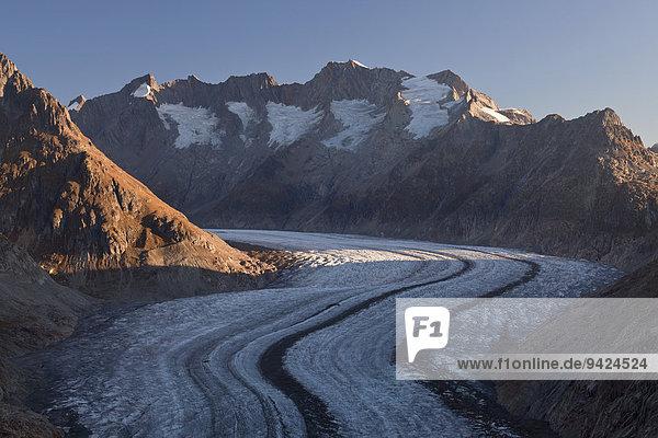 Morgenlicht am Aletschgletscher  gesehen von der Moosfluh  einem Berg bei der Riederalp  Wallis  Schweizer Alpen  Schweiz  Europa  ÖffentlicherGrund