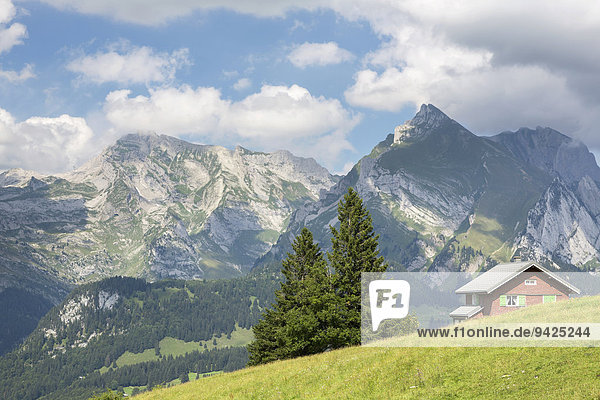 View from Klangweg or Sound Trail on Toggenburg Mountain towards the Alpstein Mountains with Saentis Mountain  Wildhaus  Canton of St. Gallen  Switzerland