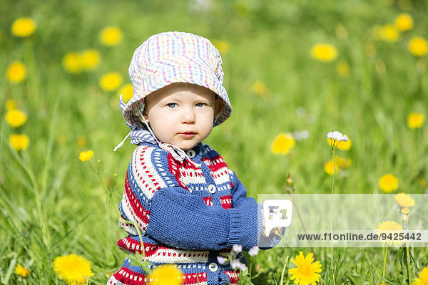 Baby  12-14 months  on a meadow