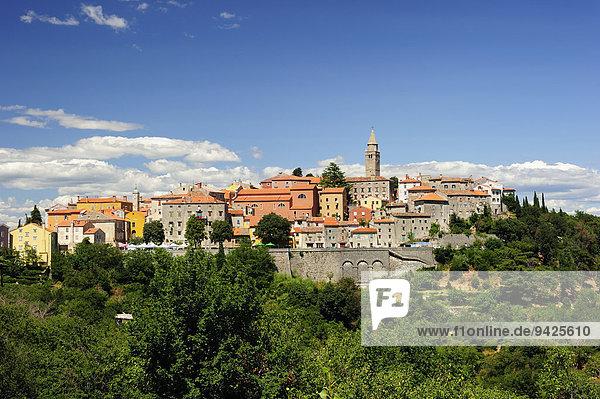 Städtchen  auf einem Hügel gelegen  Motovun  Istrien  Kroatien