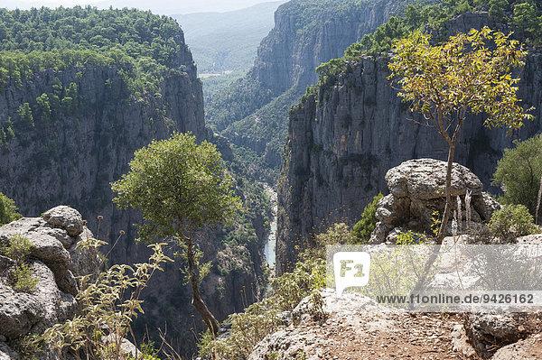 Köprülü-Kanyon-Nationalpark  400m tiefer Canyon mit Fluss Köprüçay  Taurusgebirge  Provinz Antalya  Türkei