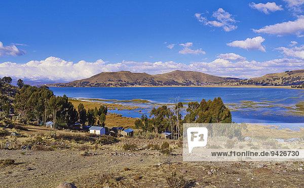 Kleine Häuser beim Titicacasee  bolivianische Hochebene Altiplano  Bolivien