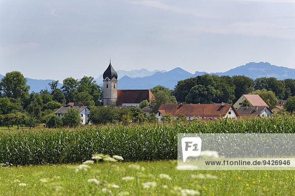 Ramerberg  Wasserburger Land  Oberbayern  Bayern  Deutschland
