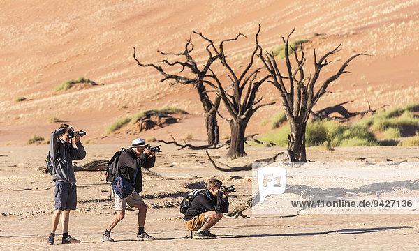 Drei Wanderer fotografieren einen abgestorbenen Baum in der Salz-Ton-Pfanne  Deadvlei  Sossusvlei  Namib-Wüste  Hardap  Namibia