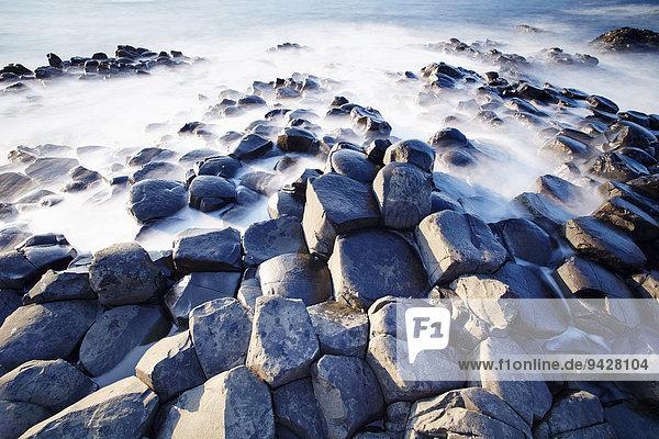 Giant's Causeway  UNESCO Weltnaturerbe  Bushmills  County Antrim  Nordirland  Großbritannien