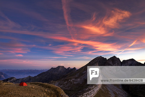 Evening in the Swiss eastern Alps on Mt. Margelkopf above the Rhine Valley  Switzerland  Europe