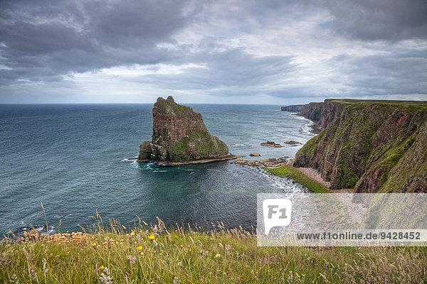 Stacks of Duncansby an der schottischen Nordseeküste  Schottland  Großbritannien  Europa