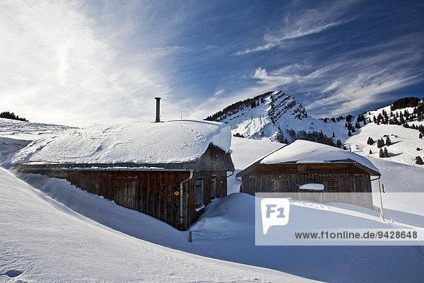 Alm unterhalb vom Stockberg in den Schweizer Ostalpen im Appenzell  Schweiz  Europa