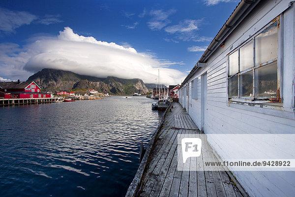 Hafen von Henningsvaer auf den Lofoten  Norwegen  Europa