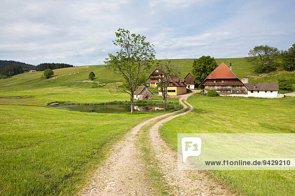 Bauernhof bei Hornberg im Schwarzwald  Baden-Württemberg  Deutschland  Europa  ÖffentlicherGrund