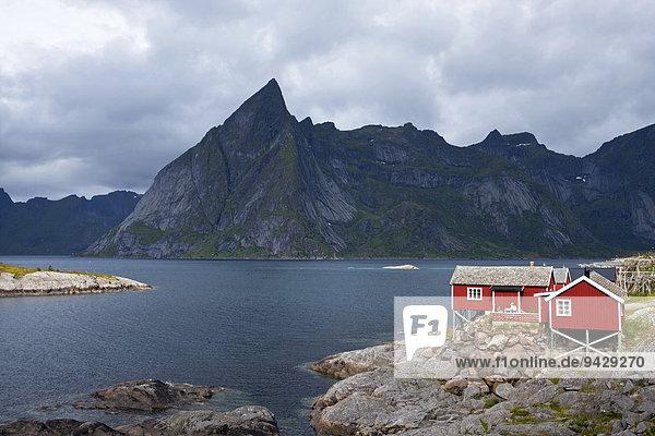 Rote Fischerhäuser in Reine auf den Lofoten  Norwegen  Skandinavien  Europa  ÖffentlicherGrund