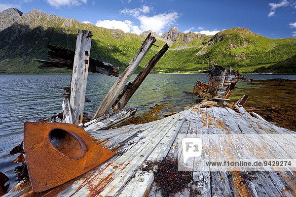 Schiffswrack auf der Inselgruppe der Lofoten  Norwegen  Skandinavien  Europa ÖffentlicherGrund