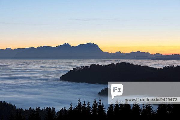 Abendstimmung über dem Hochnebel mit Blick auf den Alpstein vom Hirschberg beim Pfänder  Österreich  Europa