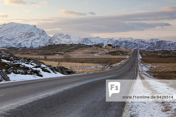 Empty road in the Lofoten Islands in winter  Norway  Europe