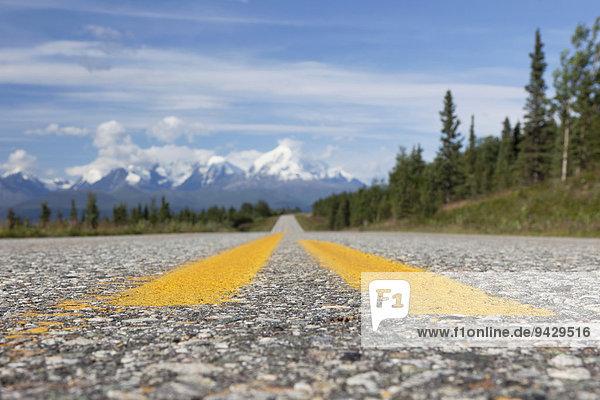 Highway in der Alaska Range  Alaska  USA.