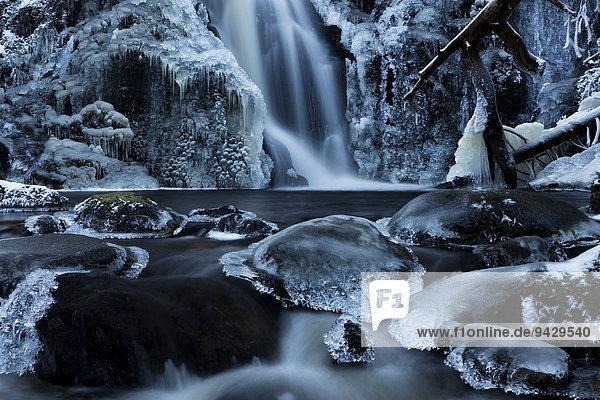 Eisiger Wasserfall bei Falkau in der Nähe vom Feldberg  Schwarzwald  Deutschland  Europa