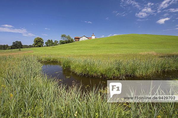Bauernhof mit Hofkapelle am Hegratsrieder See im Allgäu  Bayern  Deutschland  Europa  ÖffentlicherGrund