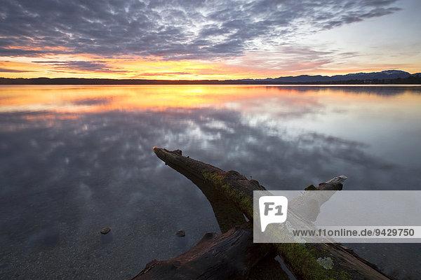 Morgenstimmung am Starnberger See  Bayern  Deutschland  Europa  ÖffentlicherGrund