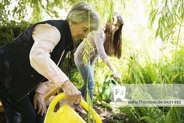 Großmutter und Enkelin gießen Pflanzen unter Weidenbaum