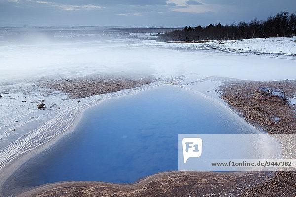 Dampfendes Thermalwasser im Winter  Haukadalur  Suðurland  Island  Europa