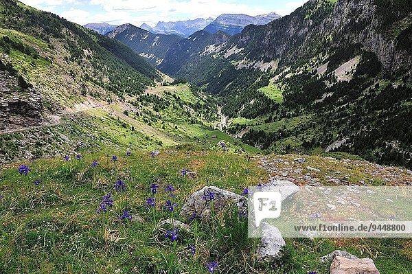 Tal Huesca Spanien