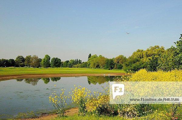 Monarchie Ansicht Golftee Tee Zimmer Golfsport Golf Richmond London Borough of Richmond upon Thames Feuchtgebiet Verein Kurs England Surrey