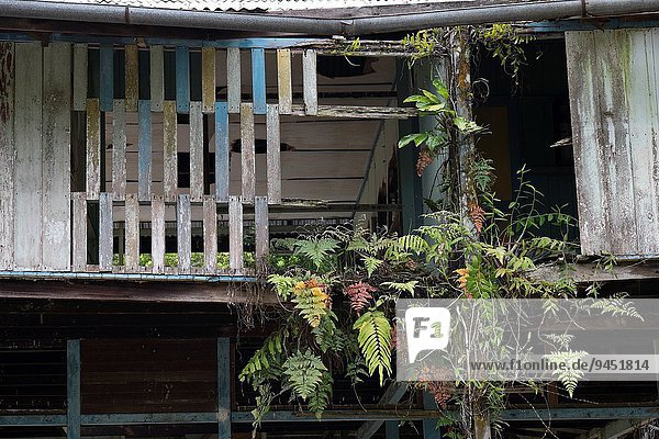 Wohnhaus, verlassen, Malaysia, Sarawak