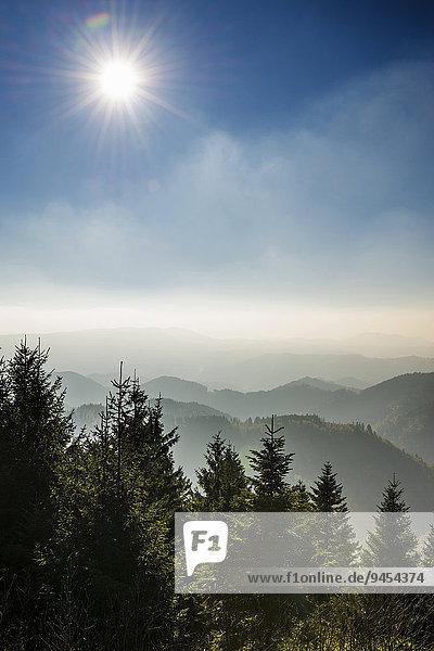 Am Schliffkopf  Naturpark Schwarzwald Mitte/Nord  Schwarzwald  Baden-Württemberg  Deutschland  Europa Am Schliffkopf, Naturpark Schwarzwald Mitte/Nord, Schwarzwald, Baden-Württemberg, Deutschland, Europa