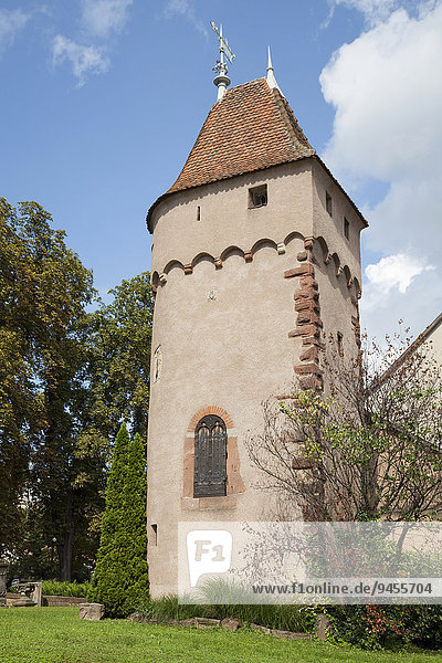 Monument Gyss  Obernai  Elsaß  Frankreich  Europa