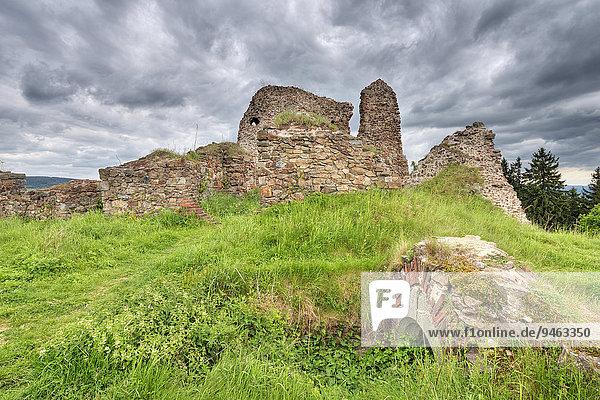 Ruine der Burg Lichnice  ehemals Burg Lichtenburg  Eisengebirge  T?emo?nice  Pardubitzer Region  Tschechien  Europa